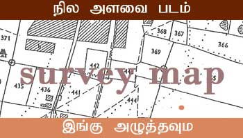 Kayalpatnam Survey Map